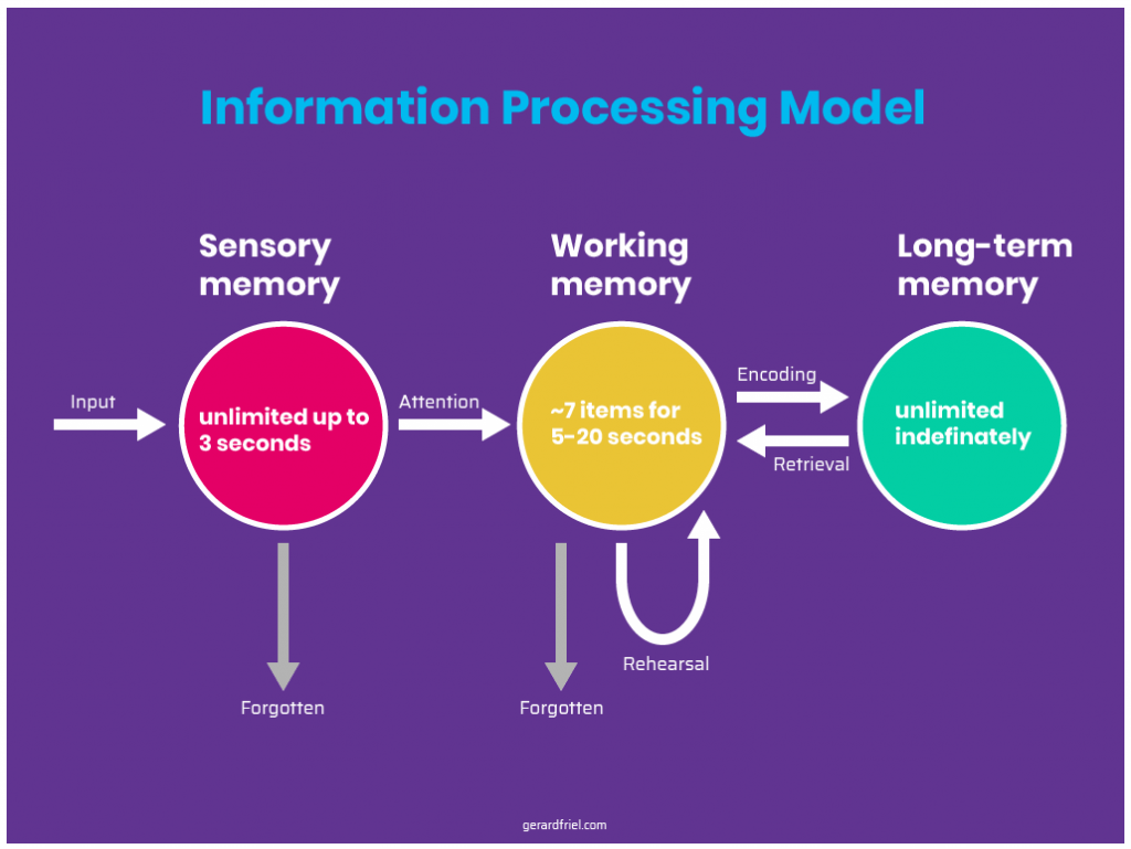 information-processing-model-cognitive-load-improving-dc/tn-red-ragged-fiend